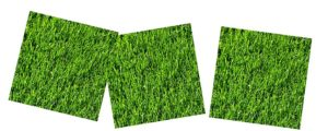 lawnblock logo pieces
