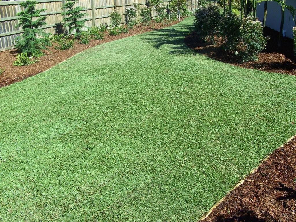 Lawn Block Lawn Grass