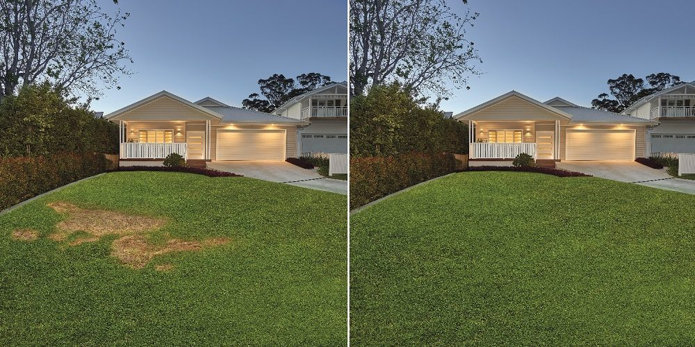 Lawn Block Real Estate Before After 2