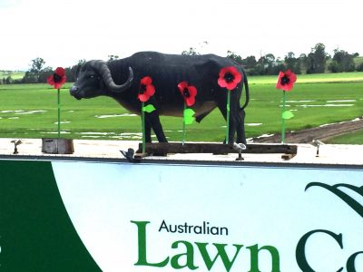 Lawn Block Walter Anzac Day