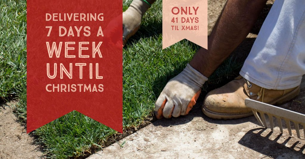 Delivering Turf Grass 7 Days A Week Until Xmas