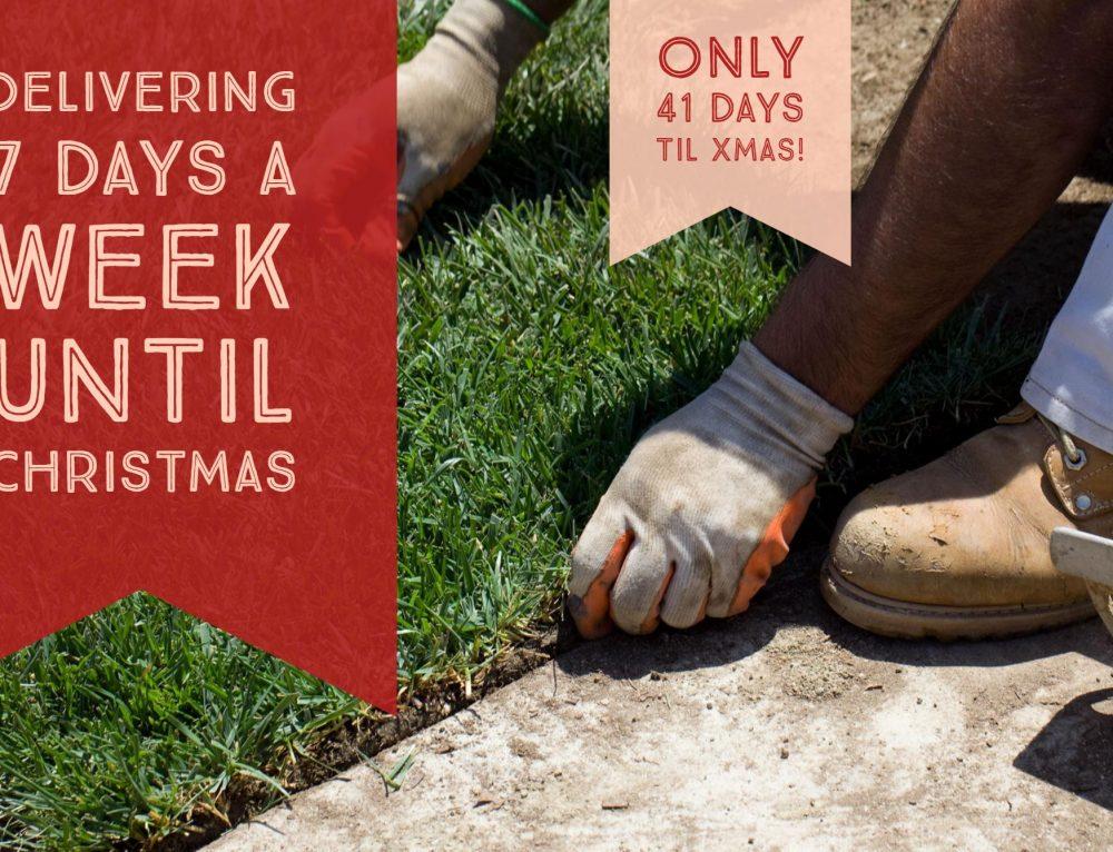 Delivering 7 Days A Week Until Christmas!