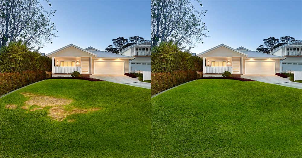 Lawn Block Lawn Repair Before And After