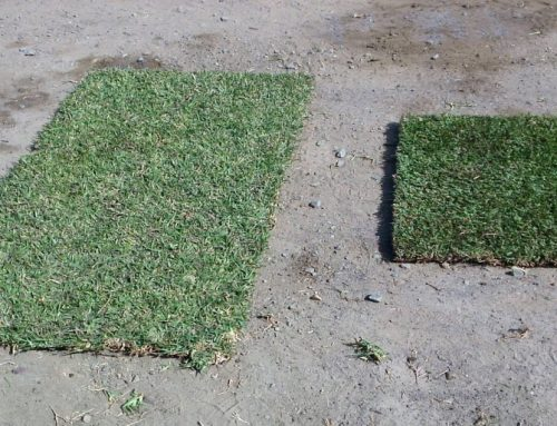 Lawn Block is small, light and easy!