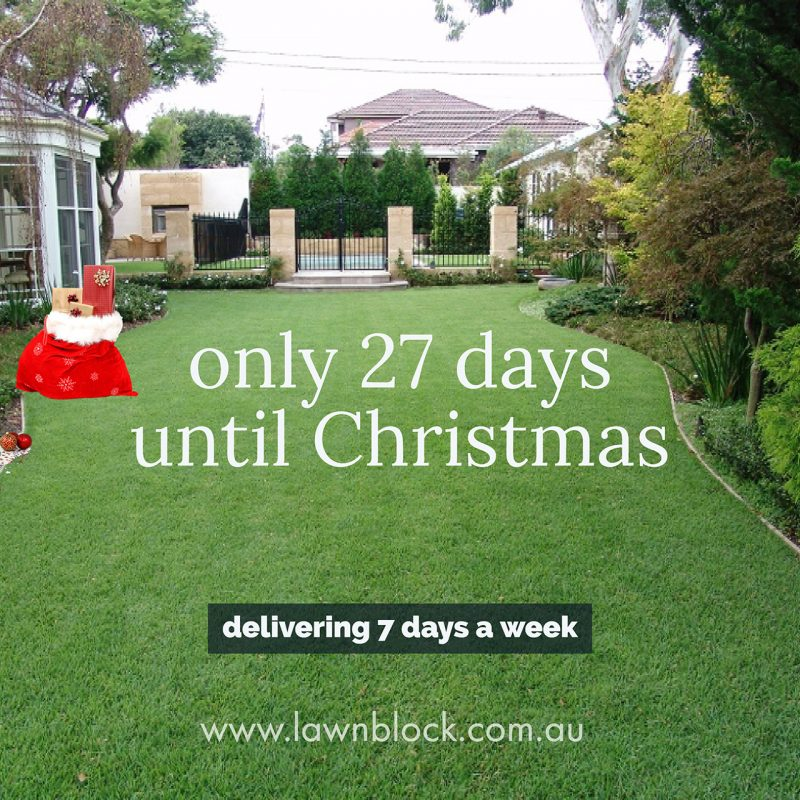 Only 27 Days Until Christmas Lawn Block