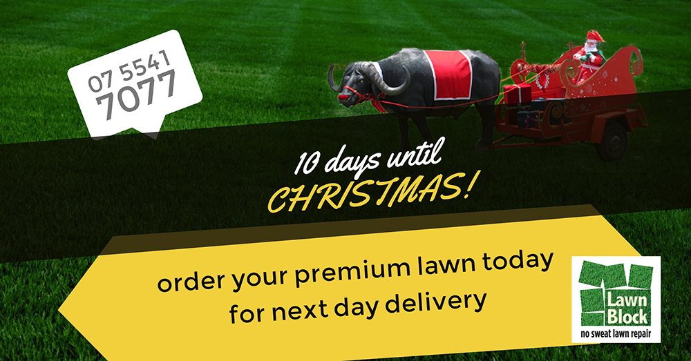 Lawn Block Lawn Repair 10 Days Until Christmas