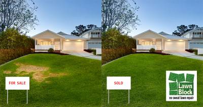 Lawn Block Lawn Repair Before And After for Sale Sold