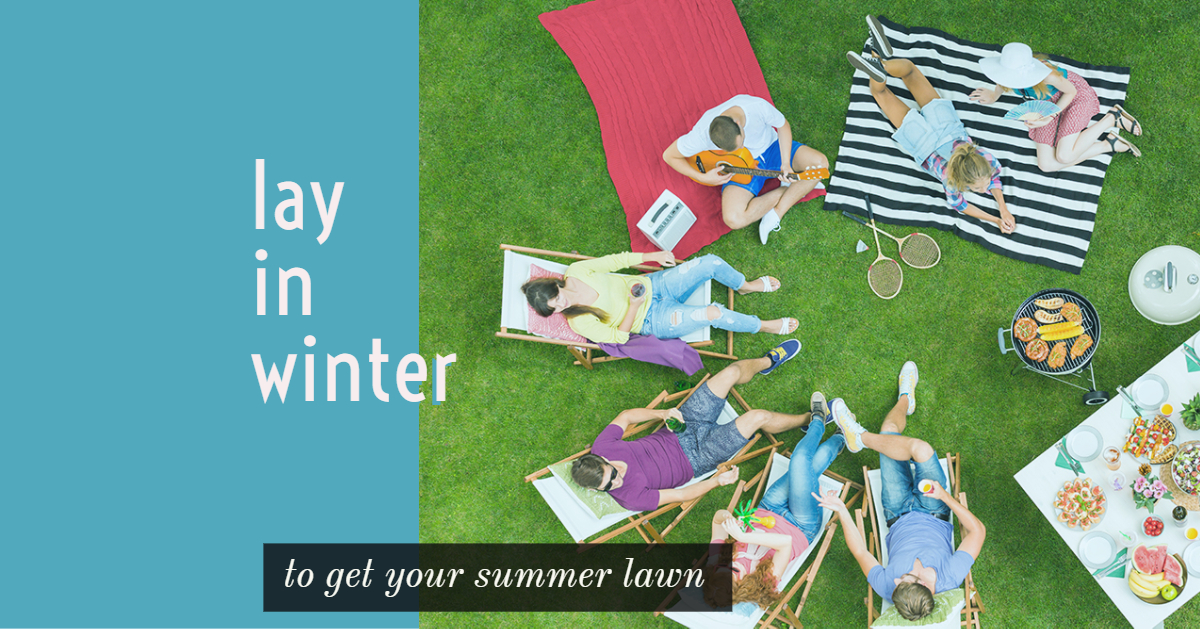 Lay in Winter to get your Summer lawn