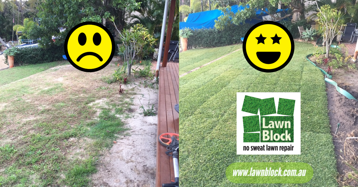 Lawn Block Lawn Repair Emojis