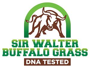 Sir Walter Buffalo Grass DNA Tested Logo Lawn Block