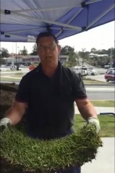 Lawn Block Demo thumb
